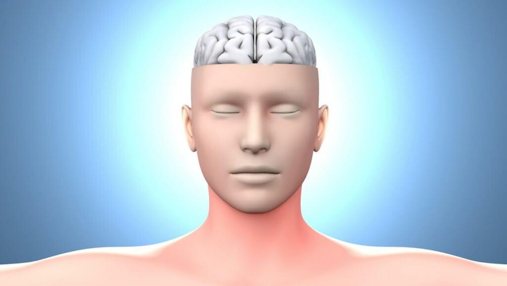 Neuro Blog Image